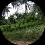 freelancers-in-India-Data-Sciences-Balasore-DEBABRATA-BEHERA