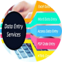 freelancers-in-India-Data-Entry-Hyderabad-Nahid