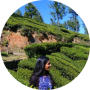 freelancers-in-India-PHP-Web-Training-/-Teacher-PATHANAMTHITTA-Anusree-Vijay